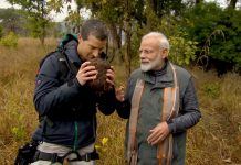 Bear Grylls with Prime Minister of India, Narendra Modi sniffing animal dung in the wild on Man vs. Wild show